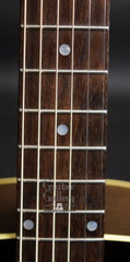 Fairbanks F-30 RS guitar fretboard