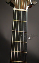 Simon Fay guitar fan frets