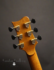 Greenfield Guitar Gallery 20th anniversary Guitar headstock back