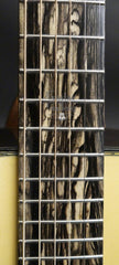 Greven PS Guitar Gallery 20th Anniversary Guitar