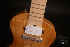 New Complexity Harmonic Isolator guitar at Guitar Gallery