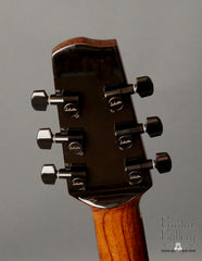 Langejans BR-6 guitar headstock back