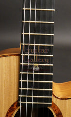 L R Williams classical guitar fretboard