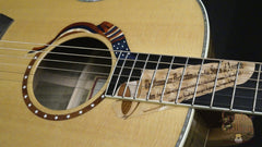 Ltd Edition Taylor Liberty Tree guitar
