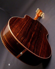 used McPherson 4.5 Ebony guitar back glam shot
