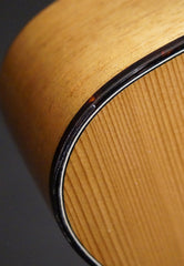 NK Forster tenor guitar detail