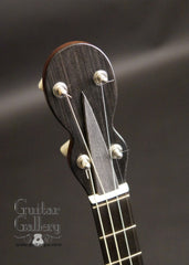 NK Forster tenor guitar headstock