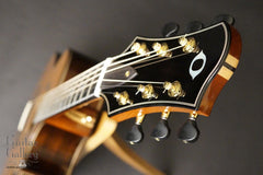 Olson SJ headstock