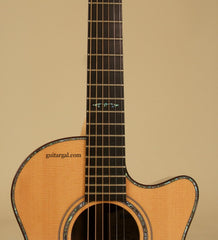 Ryan Guitar: Brazilian Rosewood Mission GC Cutaway