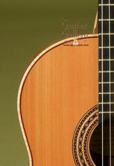Langejans Guitar: Used Douglas Fir Top MC-6