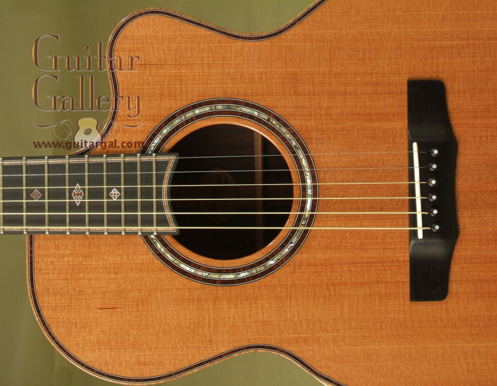 Charis Guitar: Used CocoBolo SJ