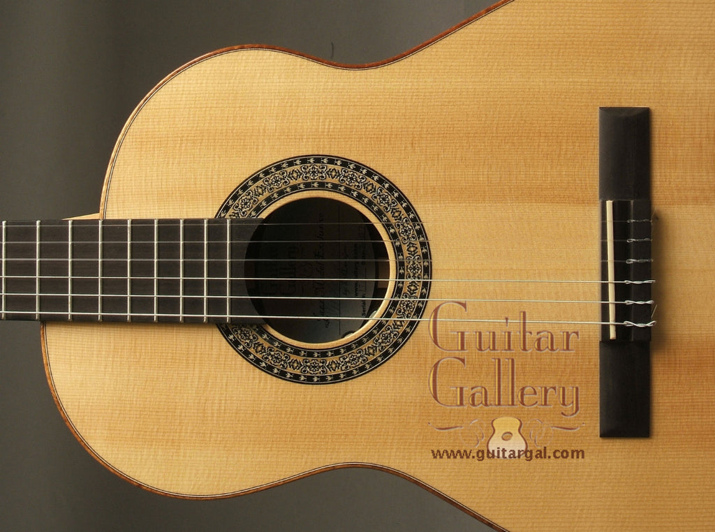 Langejans Guitar: Used Brazilian Rosewood Guitar Gallery Exclusive Jazz Guitar