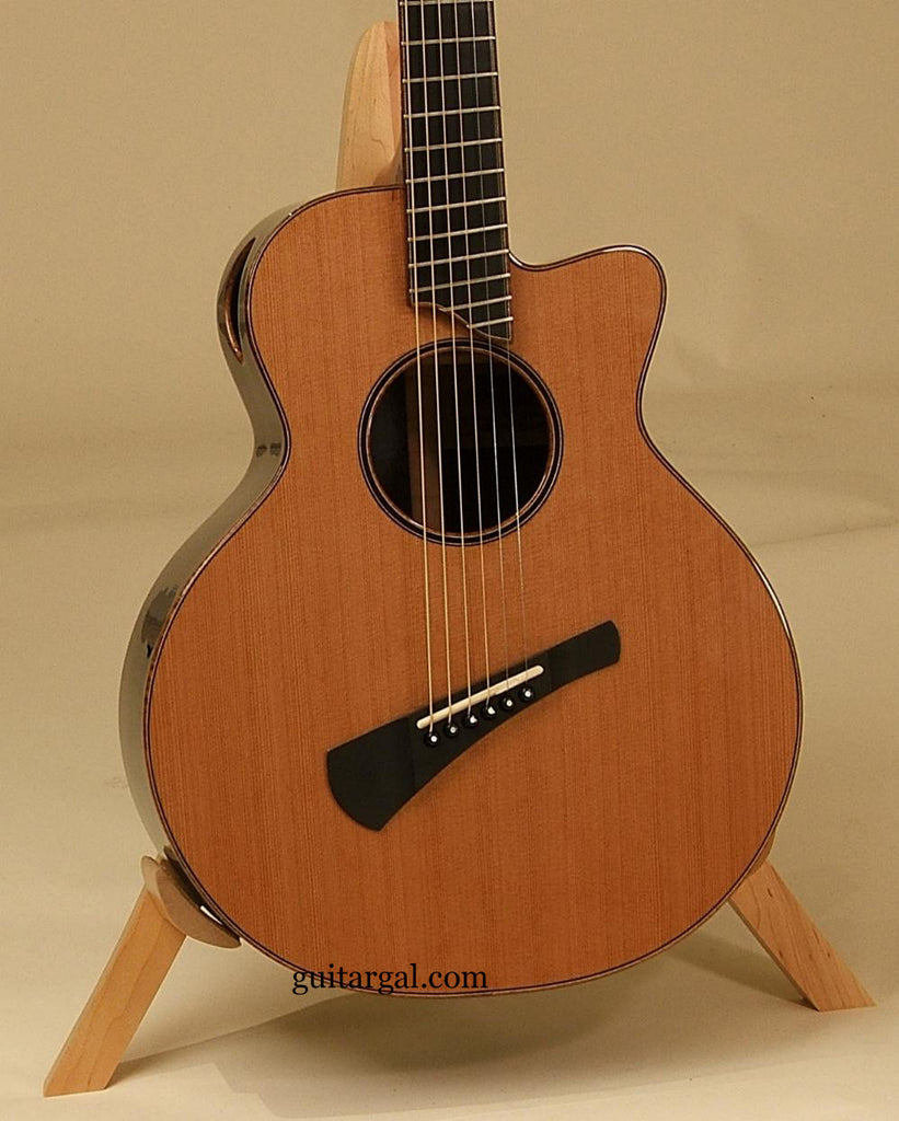 Woolson Soundcraft Guitar: Used African Blackwood JP Fan Fret
