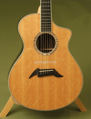 Breedlove C15e custom guitar
