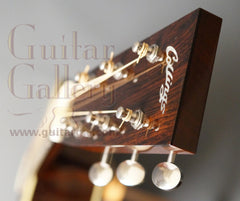 Collings D2HG guitar headstock