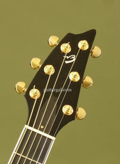 Breedlove C15e custom guitar headstock