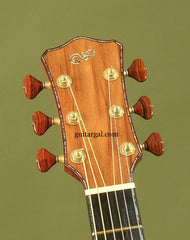 Laurie Williams Guitar: Ancient Kauri Tui