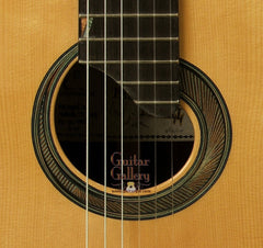 McGill Guitar: CocoBolo Picasso Collector's Series