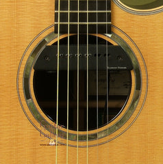 Ryan Guitar: African Blackwood Mission GC