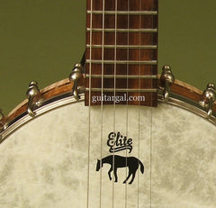 Lame Horse Instruments Guitar: Fiberskyn top Gitjo