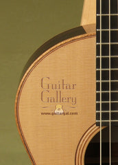 Lowden Guitars Guitar: Indian Rosewood The WEE