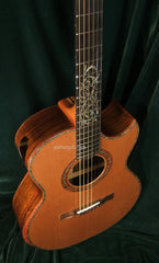 Applegate Guitar: Brazilian Rosewood Dream Series #5 SJ