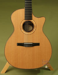 Taylor Guitar: Indian Rosewood NS74ce