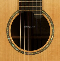 Ryan Guitar: Madagascar Rosewood Nightingale Soloist