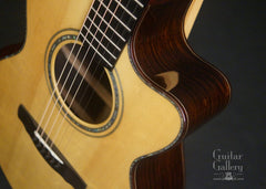 Ryan Nightingale guitar cutaway