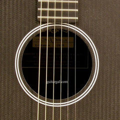 Rainsong Graphite Guitar: S-DR1000NR