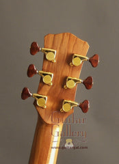 Laurie Williams ancient kauri guitar headstock