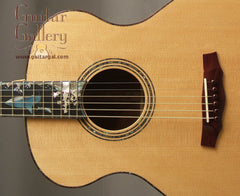 Laurie Williams guitar inlay