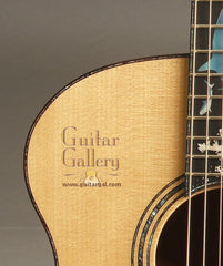 Laurie Williams Signature guitar