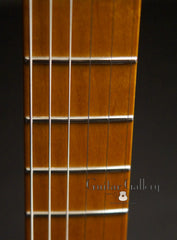 Marchione solid body electric guitar fretboard