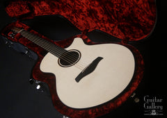 Strahm Eros guitar in custom flight case