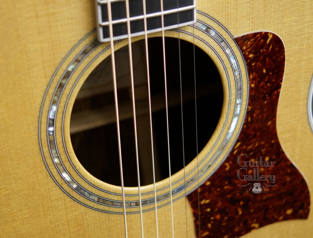 Taylor 25th Anniversary 814 Bce Guitar Guitar Gallery
