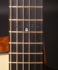 Rasmussen model C TREE guitar fretboard