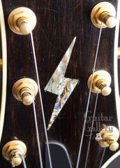 Triggs archtop headstock