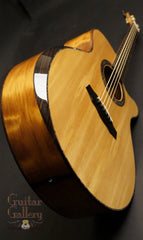 Laurie Williams Whitebait Tui Guitar w bevel