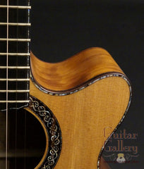 Laurie Williams Tui guitar cutaway