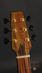 Vines guitar headstock