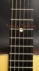 Kim Walker 000-12 guitar fretboard