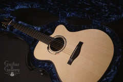 Wingert F Brazilian rosewood guitar inside case