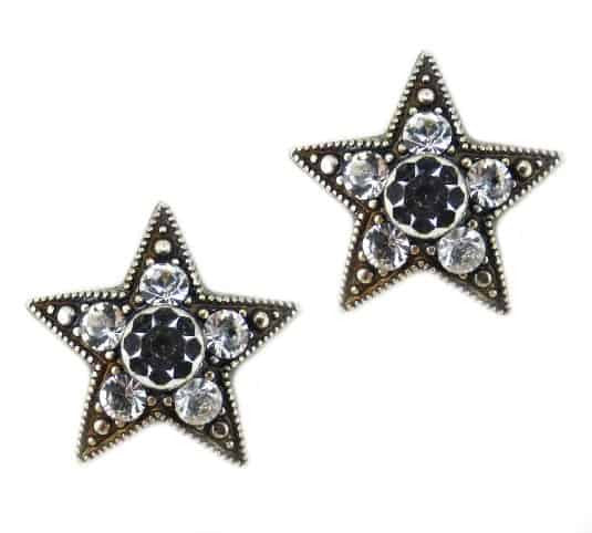Mariana Silver Plated Star Swarovski Crystal Post Earrings in Clear Crystal