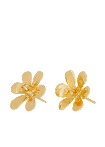 Clivia Studs in Gold