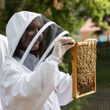 VIP Beekeeping & Beer Tasting Experience @ The Charterhouse, London