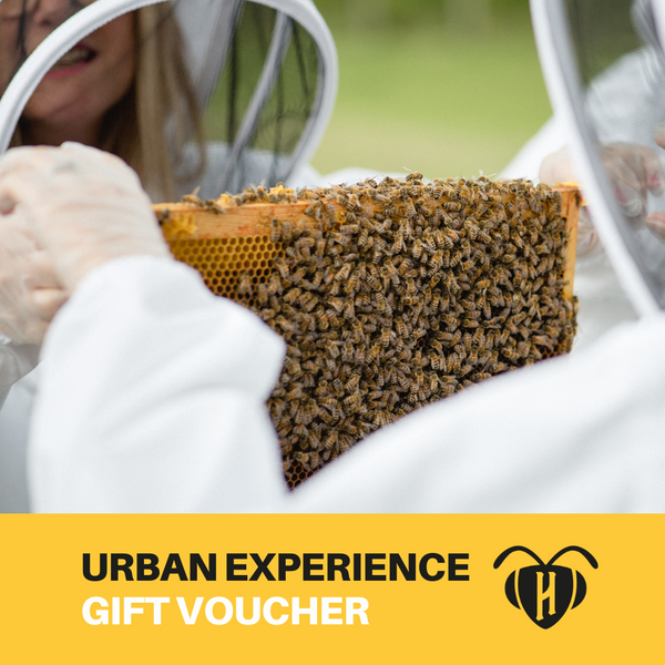 The Urban Experience - Gift voucher