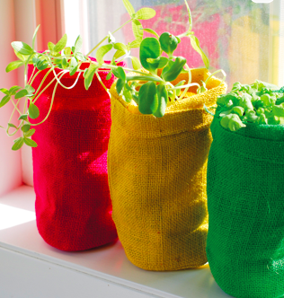 Burlap Bag Plant Growing Kits