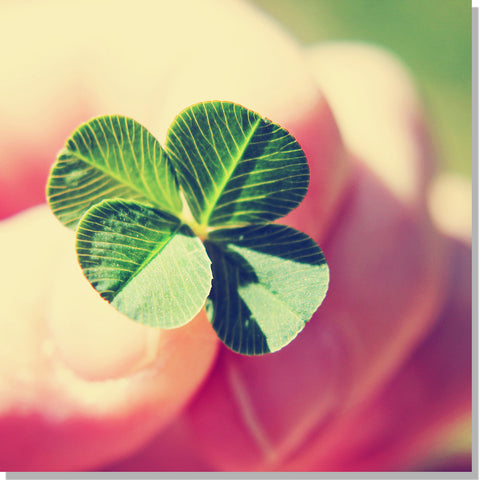Luck (Becoming Lucky: Attracting and Enhancing Good Luck) ~ Collection