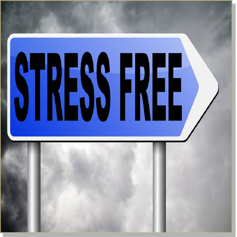 Stress Free Living - Echo-Tech (hypnosis, audible and subliminal) + InnerTalk subliminal self help motivational affirmations CDs and MP3s - Patented! Proven! Guaranteed! - The Best